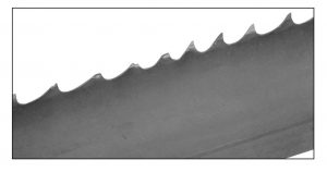 band saw blade with tooth strippage